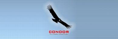 Condor_Banner.jpg