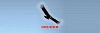Condor_Banner